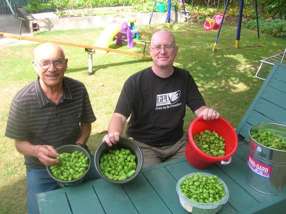 Hops Harvest 2010